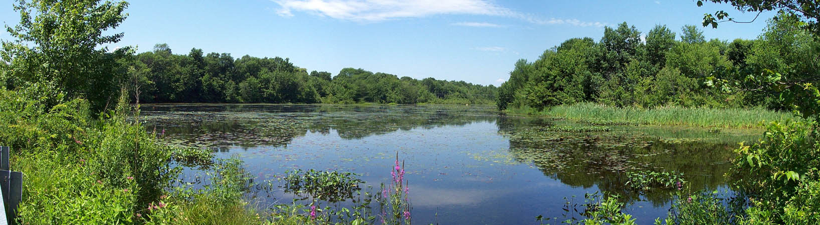 Sweet Pond Conservation Area